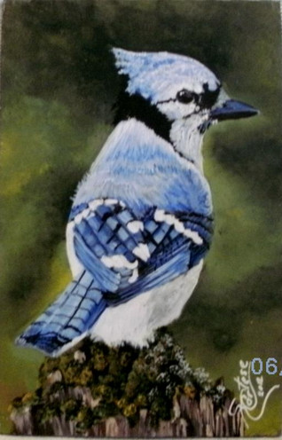 Blue Jay Bird acrylic painting on gray roofing slate