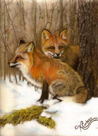 """Red fox pastel painting 9"""" x 12"""""""