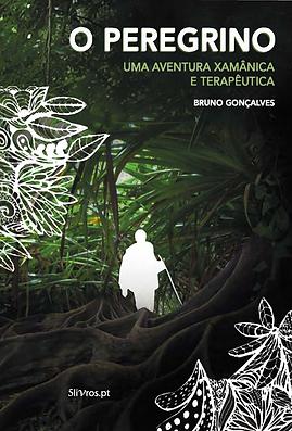Capa do Livro - O Peregrino.png