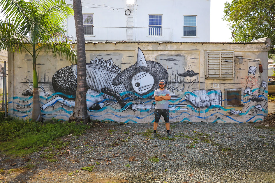 crackedink, Sea Walls St. Croix