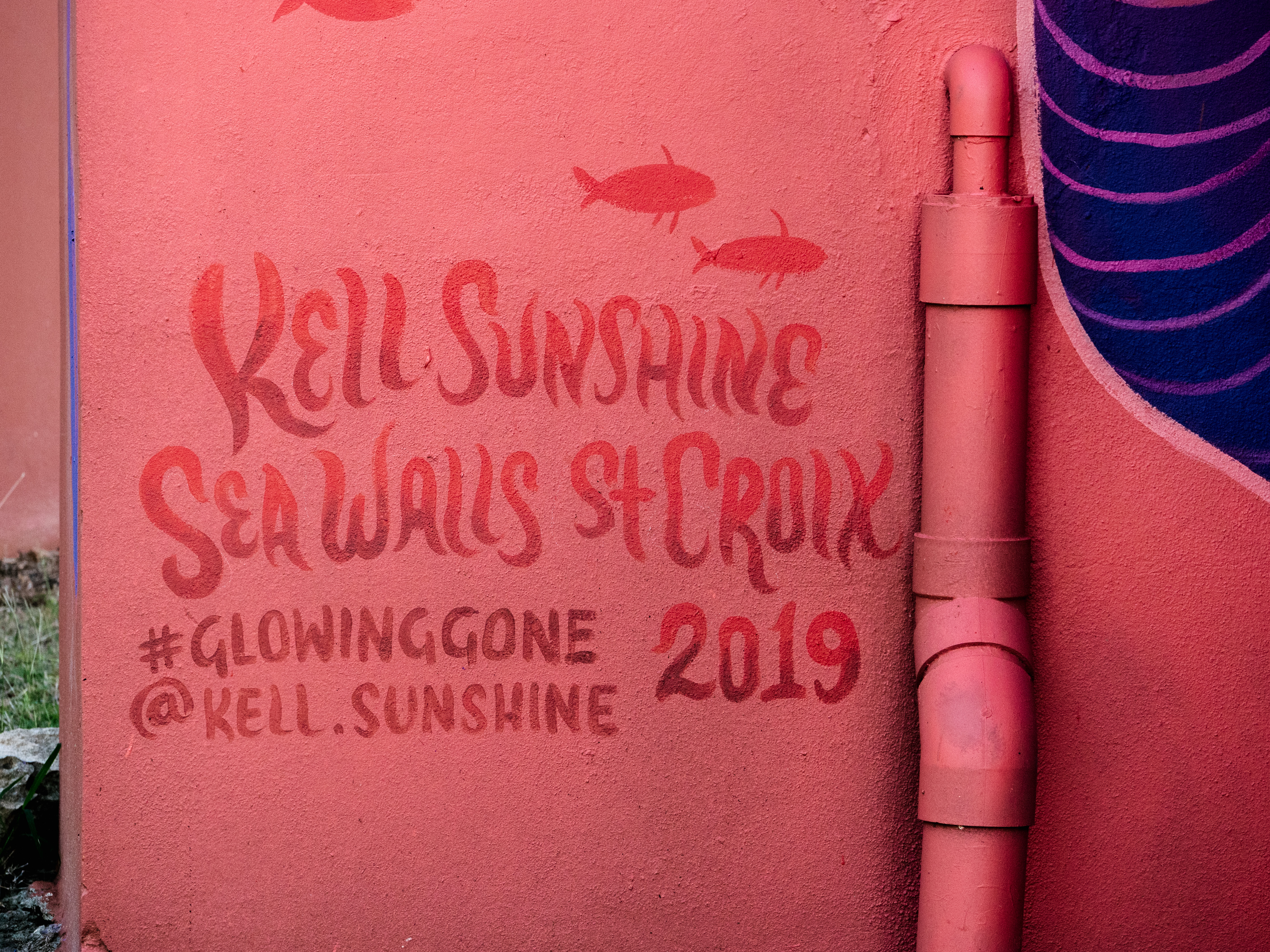 Kell Sunshine