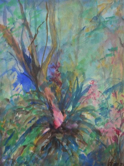 Flores en la Selva