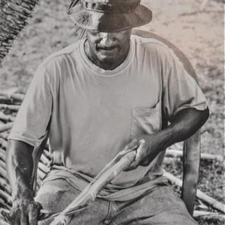 Cutting Cane