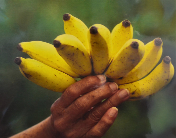 Bananas In Hand