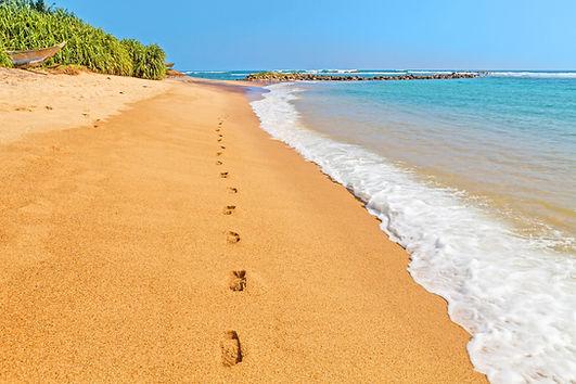 footprints in sand3.jpg