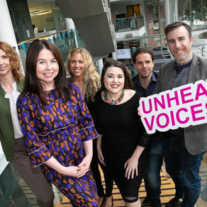 Unheard Voices - Fingal County Council