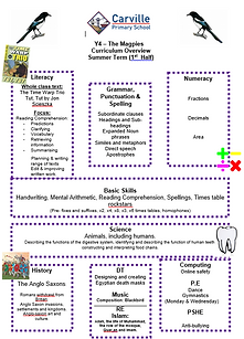 Curriculum Overview - Y4 Summer 1 2019.P