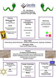 Curriculum Overview - Year 6 Summer 2 20