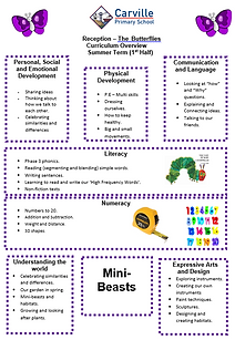 Curriculum Overview - Reception Summer 1