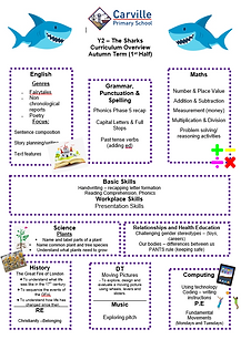 Year2 Curriculum Overview Autumn 1 2020.
