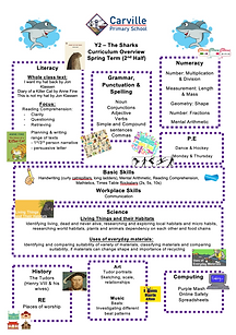 Curriculum Overview - Y2 Spring Term 2 2