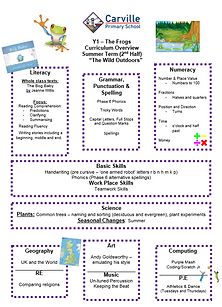 Curriculum Overview - Year 1 Summer 2 20