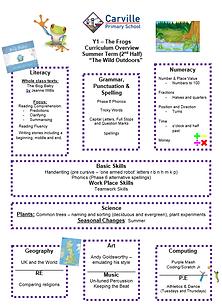 Curriculum Overview - Year 1 Summer 2 20