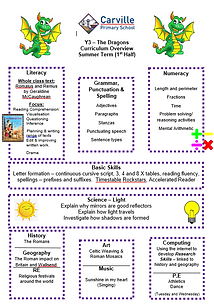 Curriculum Overview - Y3 Summer 1 2019.P