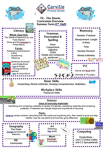 Curriculum Overview - Y2 Summer 1 2019.P