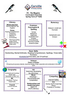 Curriculum Overview - Y4 Spring 1 2020.J
