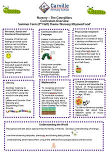 Curriculum Overview - Nursery Summer 1 2