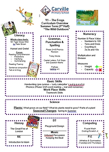 Curriculum Overview - Y1 Summer 1 2019.P