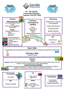 Curriculum Overview - Year 2 Summer 2 20