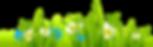 11ea50ac9d5d472c71ca72ac7f8aebf1_grass-g