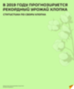 XLOPOK RUS.png