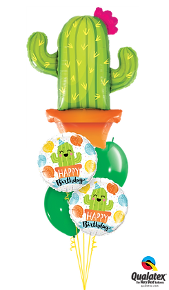 Cactus Birthday Staggered