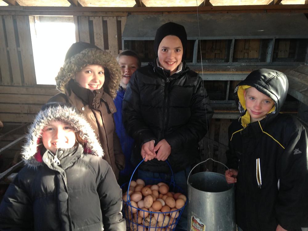 Thomas Children Collecting Eggs on Farm