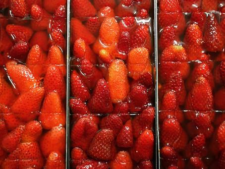 Die Erdbeer-Zeit beginnt 🍓❤️