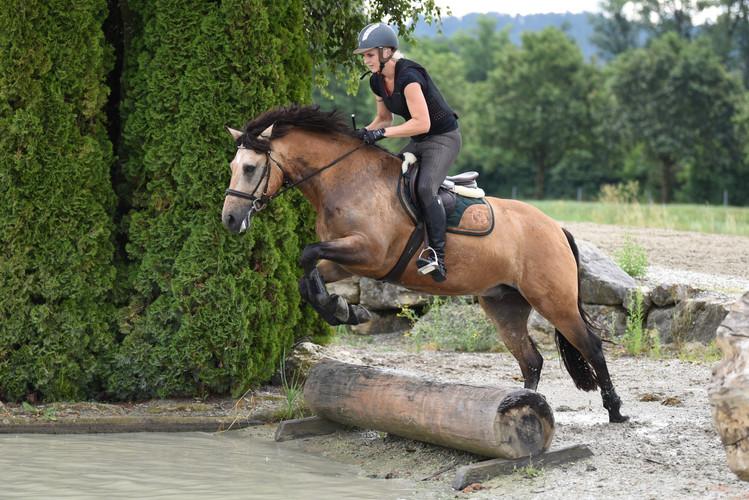 Pferdetraining IENA