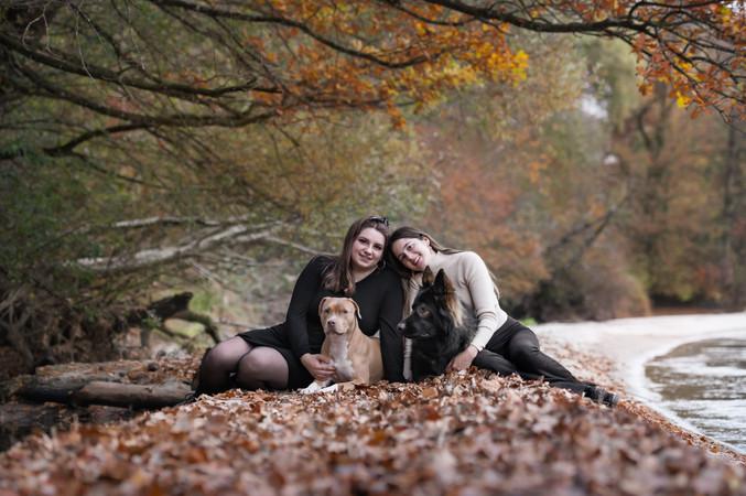 Hundefotografie Tierfotografie Augenblic
