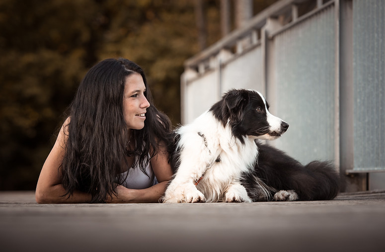Hundefotografie Hundeshooting