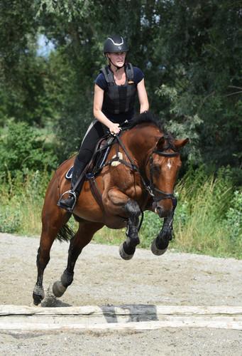 IENA Avenches Pferdetraining