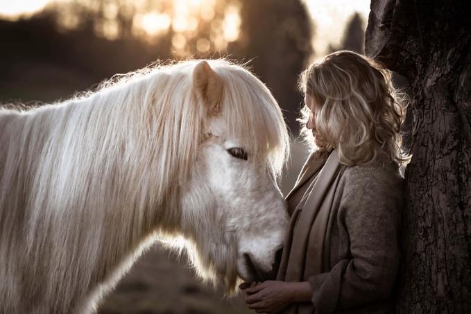 Pferdefotografie Isländer Augenblicke Be