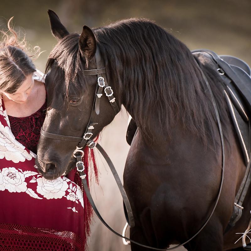 Pferdeportrait Pia und Lince