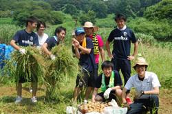 farm_3