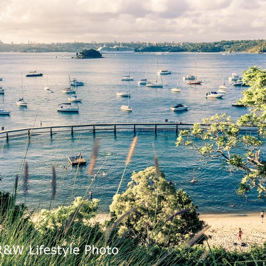 View across to Clark Island, Bradley's Head and Clifton Gardens