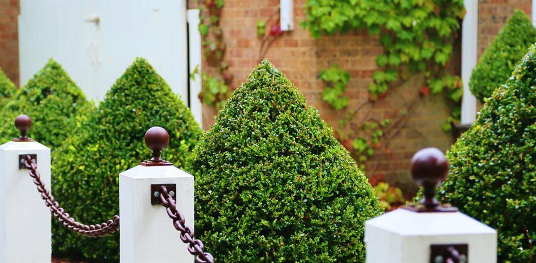 milton-park-garden-scene