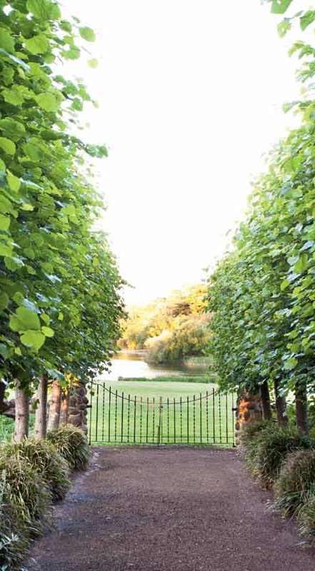 Mawallock garden 3