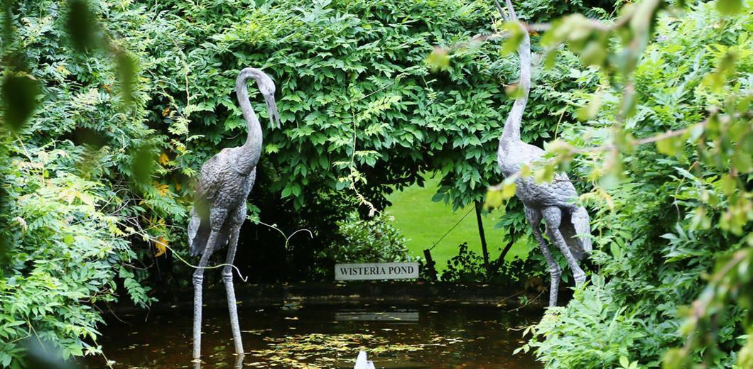 milton-park-wisteria-pond