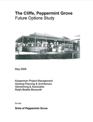 Cliffe Future Options Study