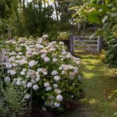 Kiloren Garden by Edna Walling