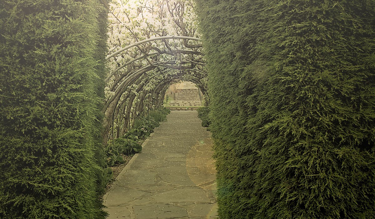 Carrick Hill -crop_home-slider-image.jpg