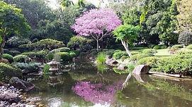 Brisbane Botanic Gardens, Mount Coot-tha