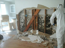 mold-damage-atascadero-1024x768.jpg