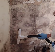 Mold-Remediation-e1356993870389.jpg