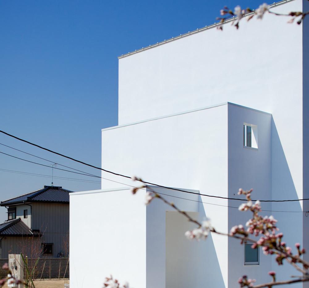 hamon_006.jpg