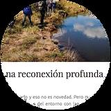 patagonia_andina-02.png