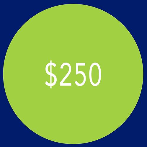 $250 Campaign Contribution