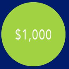 $1,000 Campaign Contribution