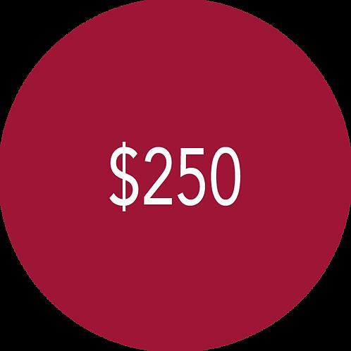 250.00 Donation